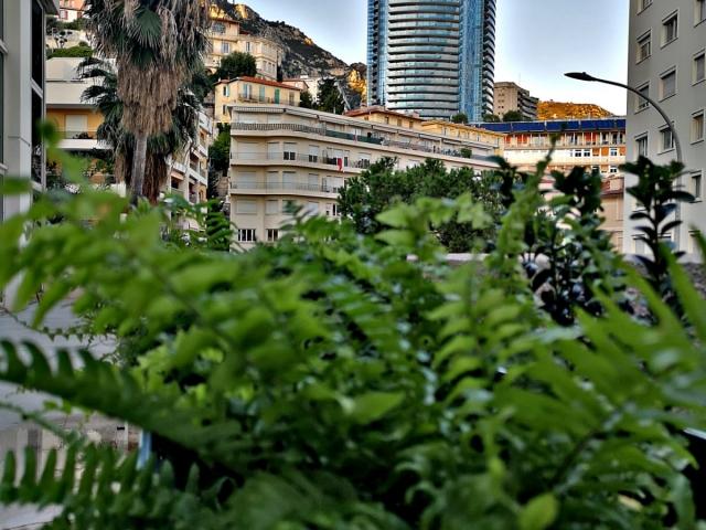 Terrasse privée de l'espace de coworking - Centre d'affaires Beausoleil - Ascot Domiciliation & Coworking - Monaco - Menton